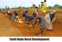 tamilnadu-rural-development