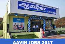 AAVIN Recruitment 2017