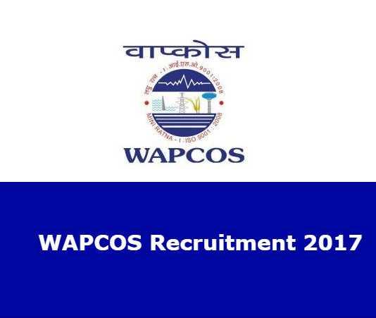 WAPCOS Limited Recruitment 2017