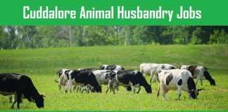 Cuddalore Animal Husbandry Recruitment 2018