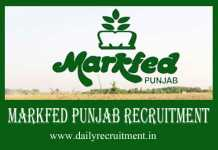 Markfed Punjab Recruitment 2019