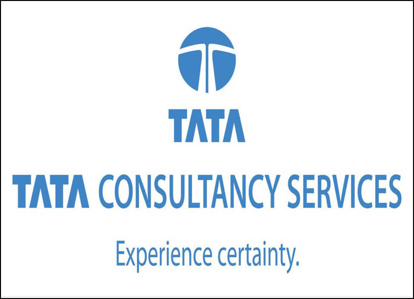 Professional writing services with examples for tcs
