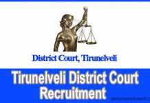 Tirunelveli District Court 2019