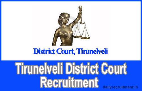 Tirunelveli District Court 2019