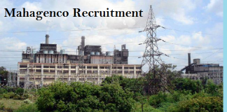 http://www.dailyrecruitment.in/wp-content/uploads/2017/09/Mahagenco-image.png