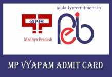 MP Vyapam PAT Admit Card 2019