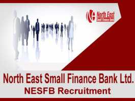 NESFB Recruitment 2019