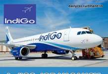 IndiGo Airlines Recruitment 2020