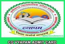 CG Vyapam Admit Card 2019