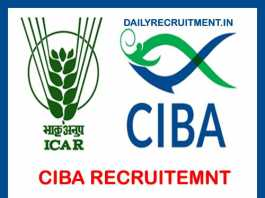 CIBA Recruitment 2019