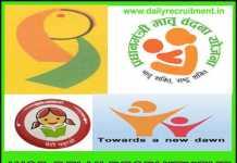 WCD Delhi Recruitment 2019