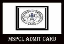MSPCL Admit Card 2019