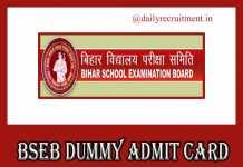 BSEB Dummy Admit Card 2019